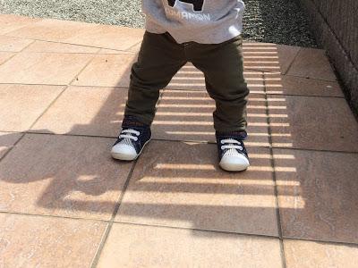1歳1ヶ月のまとめ: 歩数の増加、積木など