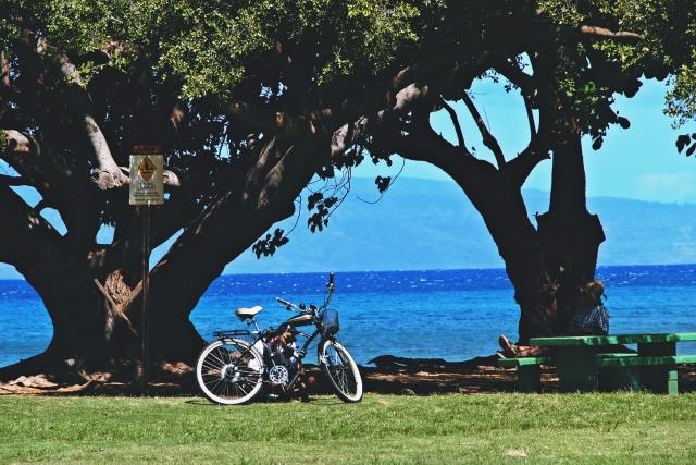 ローカルなハワイ